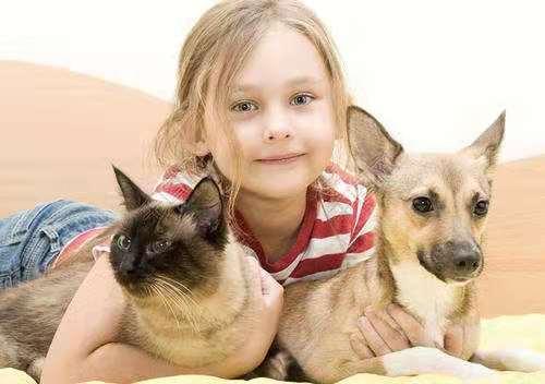 狗狗是有感情的吗?宠物会流泪吗?